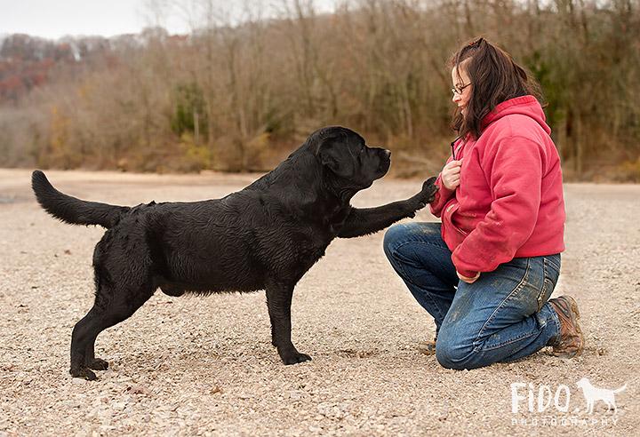 Dog photo session lake autumn